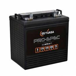 Batería de 8V. y 170Ah. para Buggy de golf eléctrico